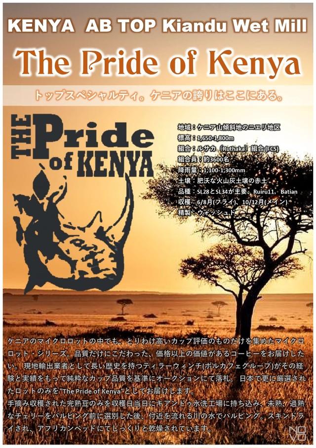ケニア プライド オブ ケニア AB TOP キアンドゥ200g フルシティロースト(中深煎り) ウォッシュド