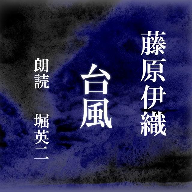 [ 朗読 CD ]台風  [著者:藤原伊織]  [朗読:堀英二] 【CD2枚】 全文朗読 送料無料 オーディオブック AudioBook