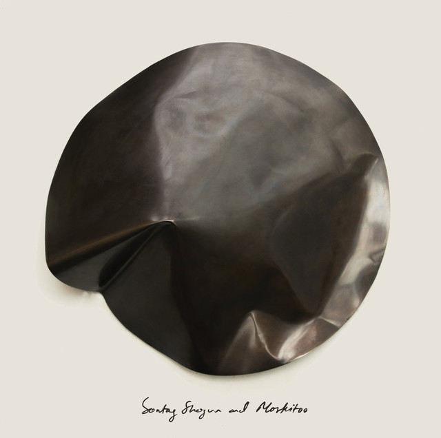 Sontag Shogun + Moskitoo「The Things We Let Fall Apart / The Thunderswan」(Home Normal)