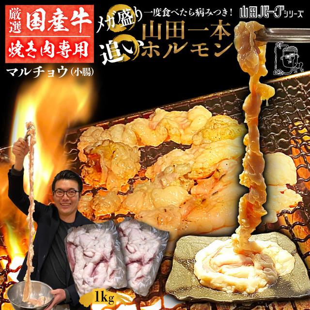 国産 牛 ホルモン 1kg(500g×2) 山田一本ホルモン 【焼肉用】