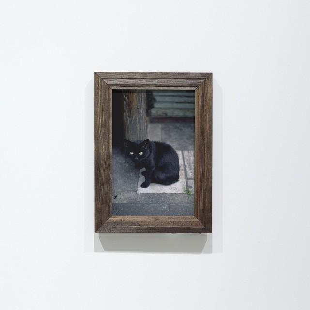 ポストカード「No.135 ゴールデン街の黒猫」10枚セット