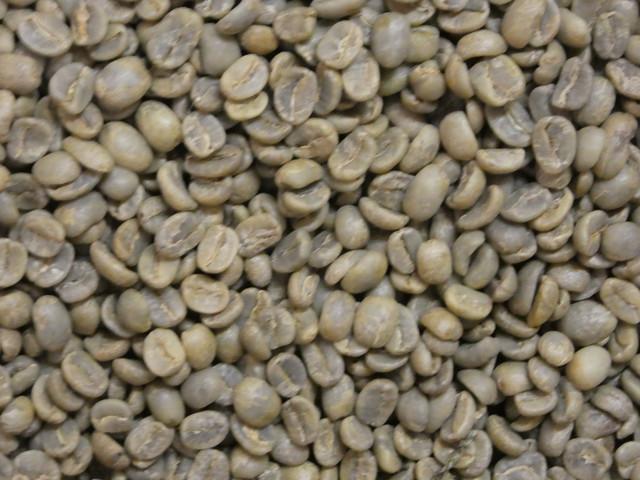 生豆 有機栽培 コロンビア RA JAS 1KG (税込み価格)