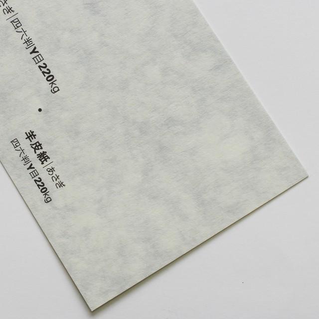 羊皮紙 (あさぎ) 110kg 4/6判