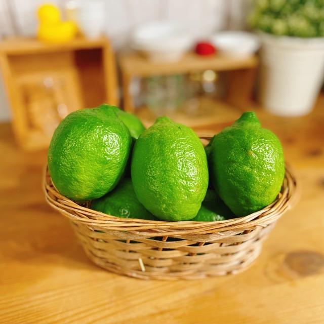 夏の希少な国産レモン 約1キロ