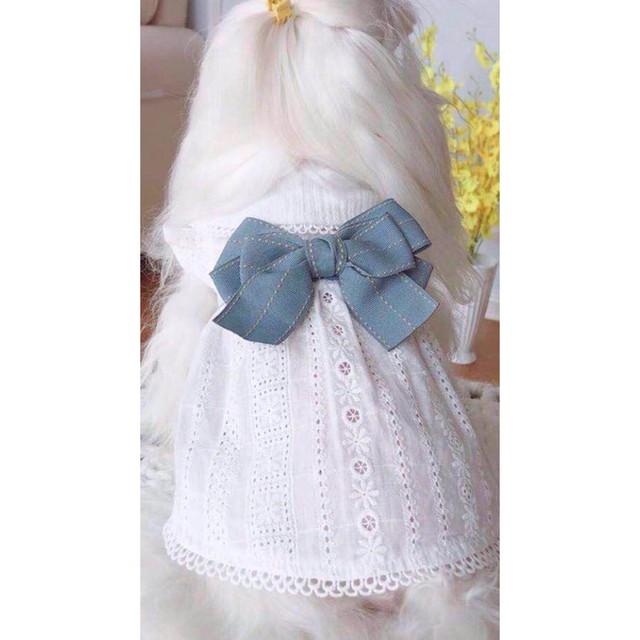 【犬服・ドッグウェア】Fancy House 星形ワッペン付き デニムのストラップ付きボリュームパンツ