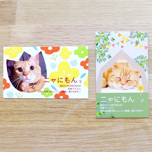 【2種類・各100枚】愛ネコちゃんオリジナル名刺(ニャにもん名刺)印刷