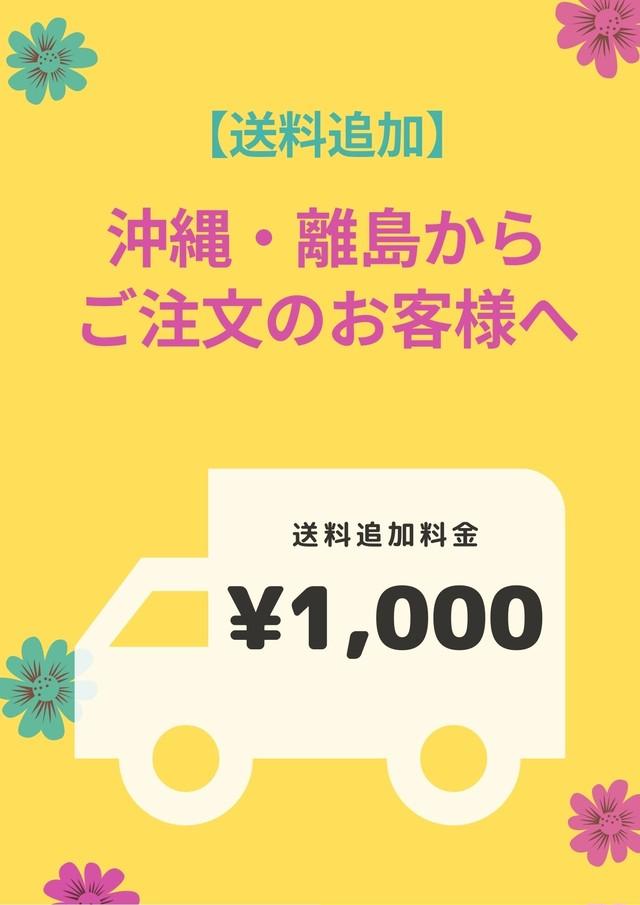 【送料追加】沖縄・離島へ発送のお客様へ