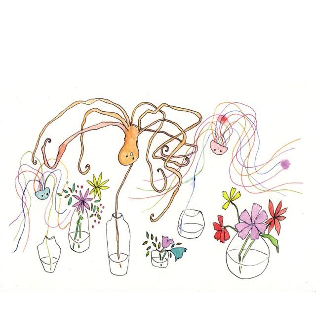 花のまねをするタコとクラゲ Octopus and Jellyfishes that imitate flowers