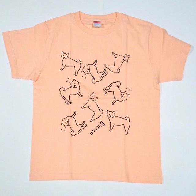 【受注制作】柴犬Tシャツ/(アプリコット・ベージュ・シティグリーンよりお色をお選びください)