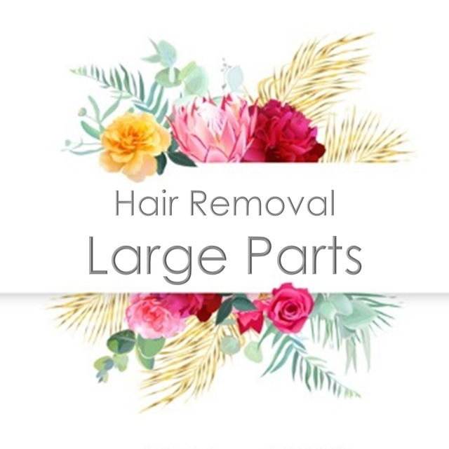 Hair Removal - L parts