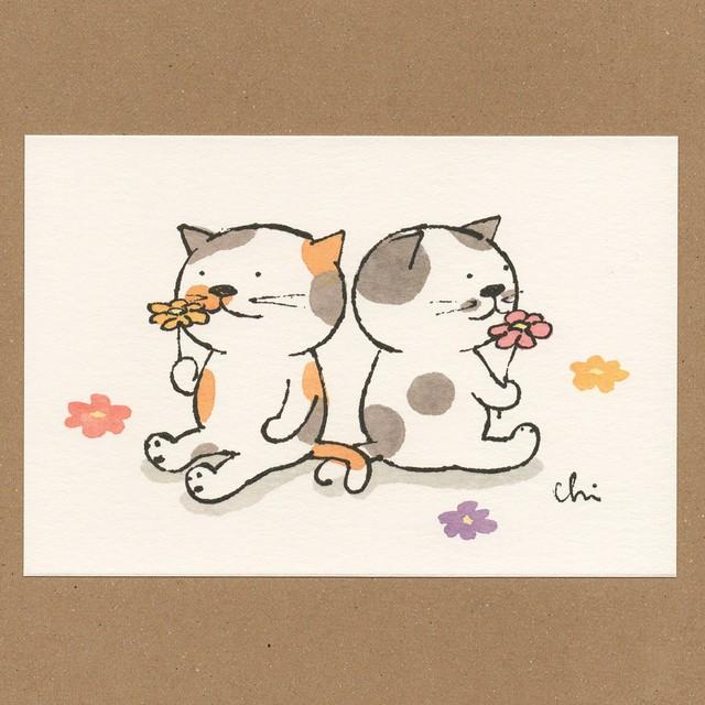 にゃんきーとすポストカード お花畑