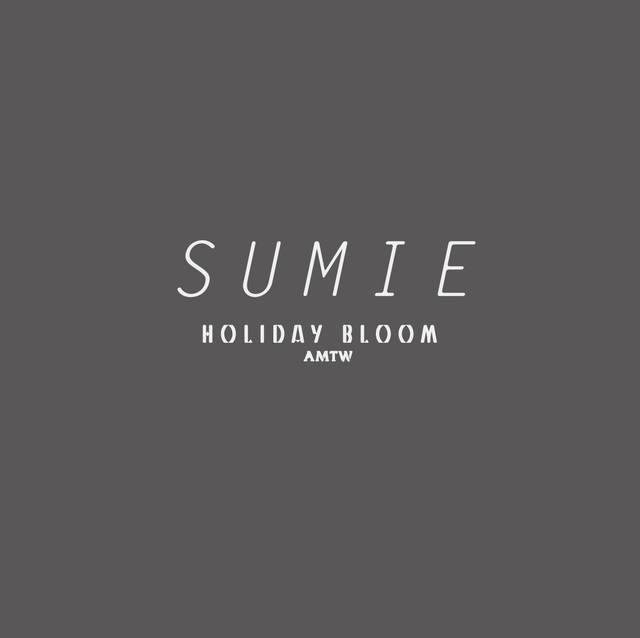 -SUMIE-  BOX ARRANGEMENT