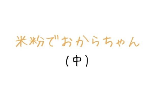米粉でおからちゃん(中) グルテンフリー