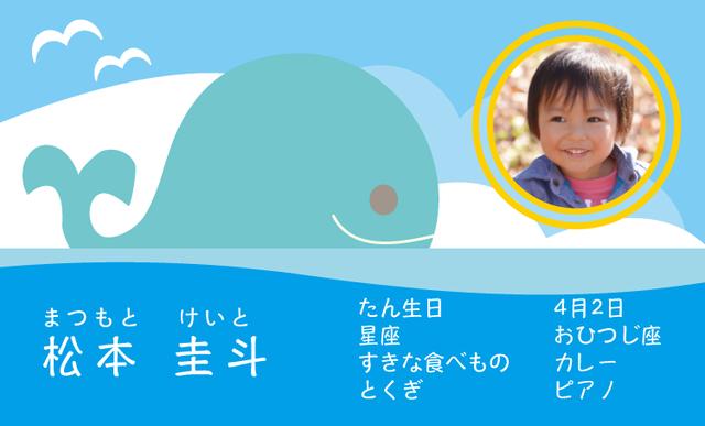 海とくじらの名刺 100枚