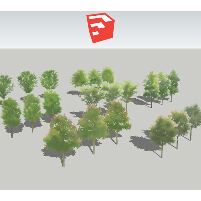 樹木イラストSketchUp 4b_002 - メイン画像