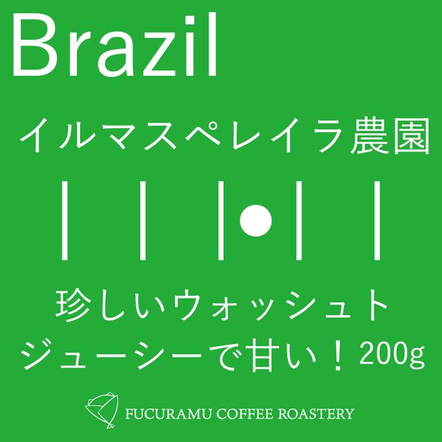 ブラジル ウォッシュト イルマスペレイラ農園【シティ+】200g