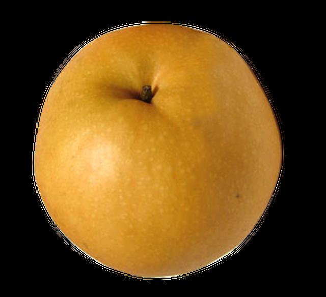 王秋 5kg(7個)