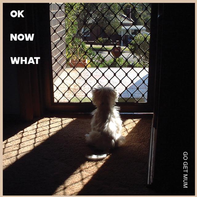 Go Get Mum / Ok Now What(200 Ltd 12inch EP)
