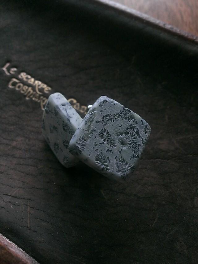 珊瑚の化石のカフスボタンFC2