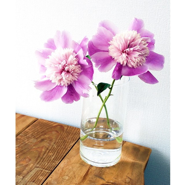 Basic flower Vase ベーシックフラワーベース C
