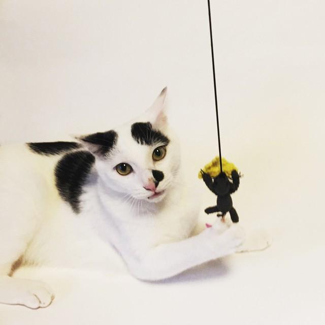 cat's toy ねずみ