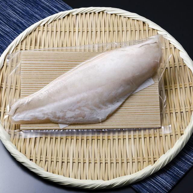 (0254)【超速鮮魚を冷凍】長崎県産ウスバハギ