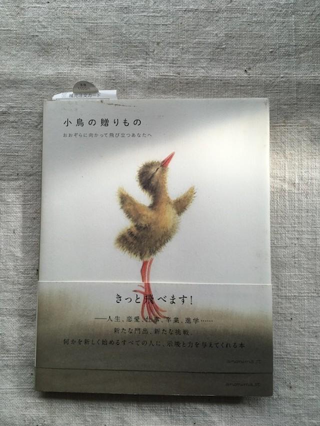 『小鳥の贈り物』ビルッコ・ヴァイニーオ著 - メイン画像