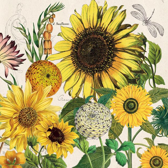【MICHEL DESIGN WORKS】バラ売り1枚 ランチサイズ ペーパーナプキン Sunflower イエロー