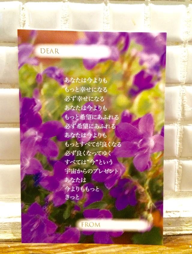 もっときっと ポストカード〜お花屋さんにて〜