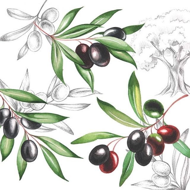 【Ambiente】バラ売り2枚 ランチサイズ ペーパーナプキン OLIVES ホワイト
