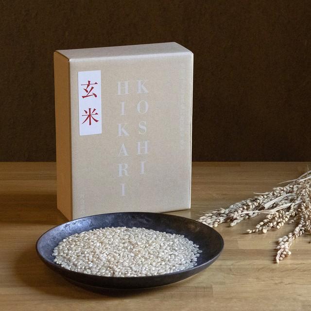 *新米予約*魚沼産コシヒカリ塩沢地区一等米【玄米】6合 ※発送は9月20日以降~