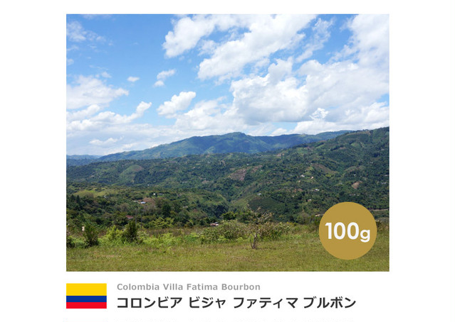 【100g】コロンビア ビジャ ファティマ ブルボン