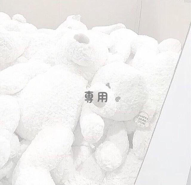 木製 /  [マンスリープレート]月齢フォト
