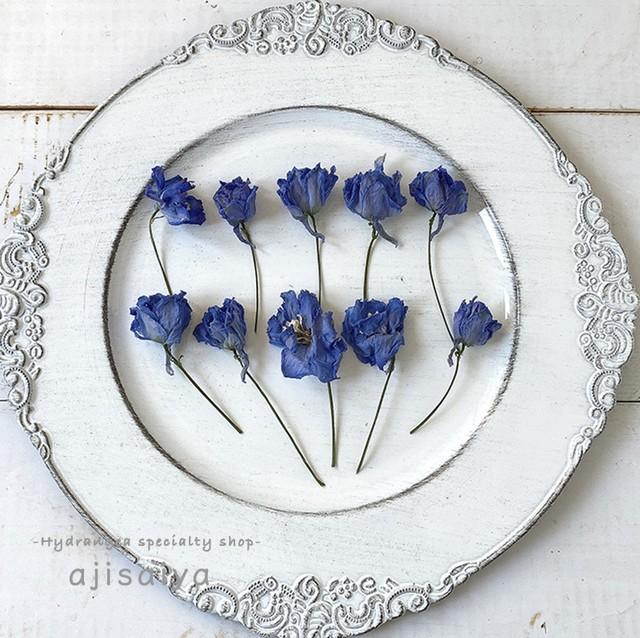 北海道から旬の花材が到着しました! デルフィニューム 花びら ナチュラルブルー