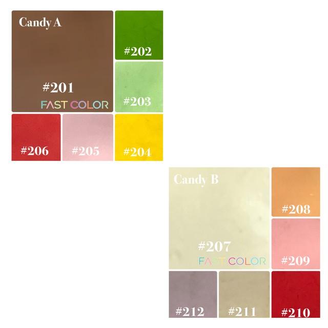 【Candy】201〜FAST COLOR A・B 5g×6色 キャンディー