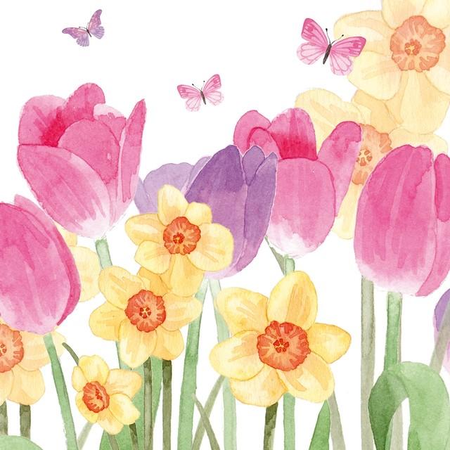【Paperproducts Design】バラ売り2枚 ランチサイズ ペーパーナプキン Hello Spring ホワイト