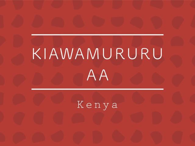 【お得!500g】ケニア / KIAWAMURURU AA