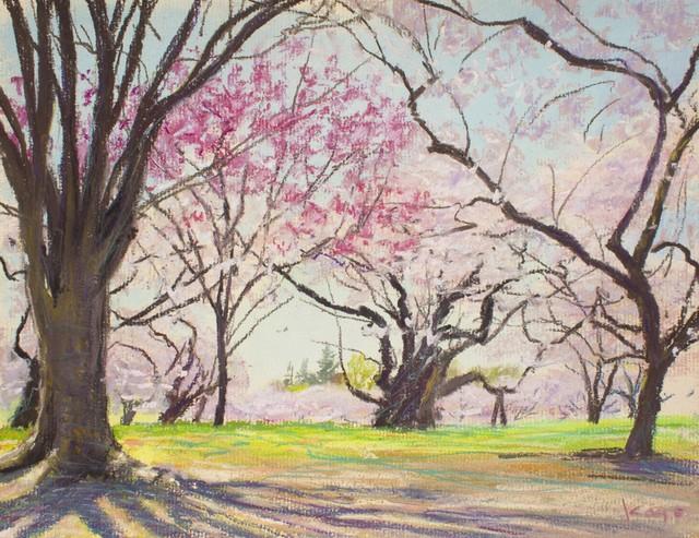 NO.95「桜の園、晴天・4月」