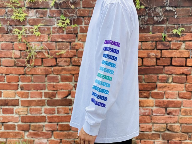 UNDEFEATED GRADIENT LS TEE WHITE LARGE 15JF6775