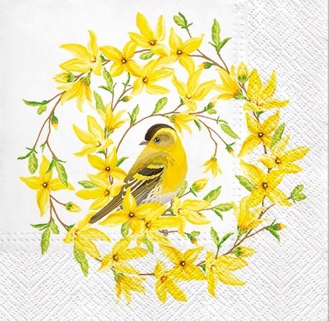 入荷しました |2020春夏【PAW】バラ売り2枚 ランチサイズ ペーパーナプキン FORSYTHIA & BIRD ホワイト