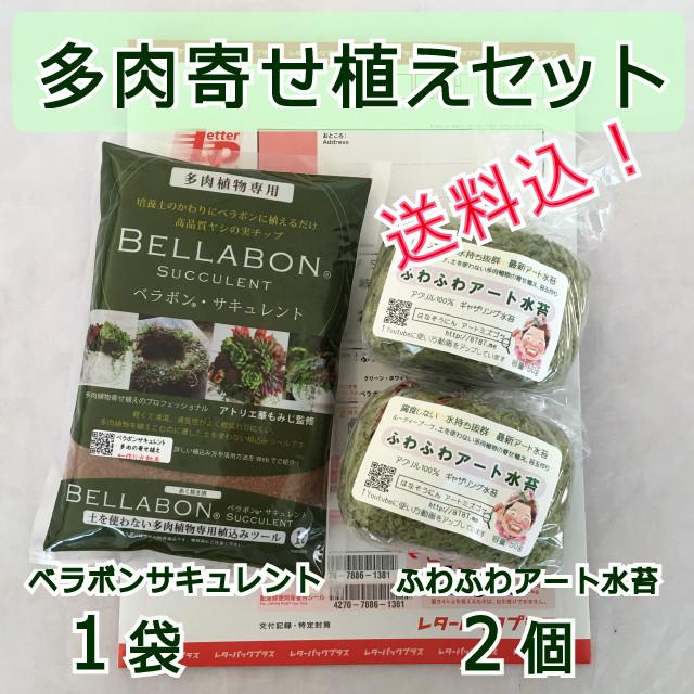 【送料込】ギャザリング水苔2個&ベラボンサキュレント1袋 セット - メイン画像