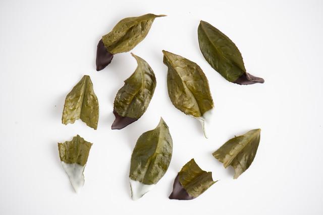 シゼンタイ / 乙な茶葉 ホワイトチョコ&ビターチョコ《受注生産》