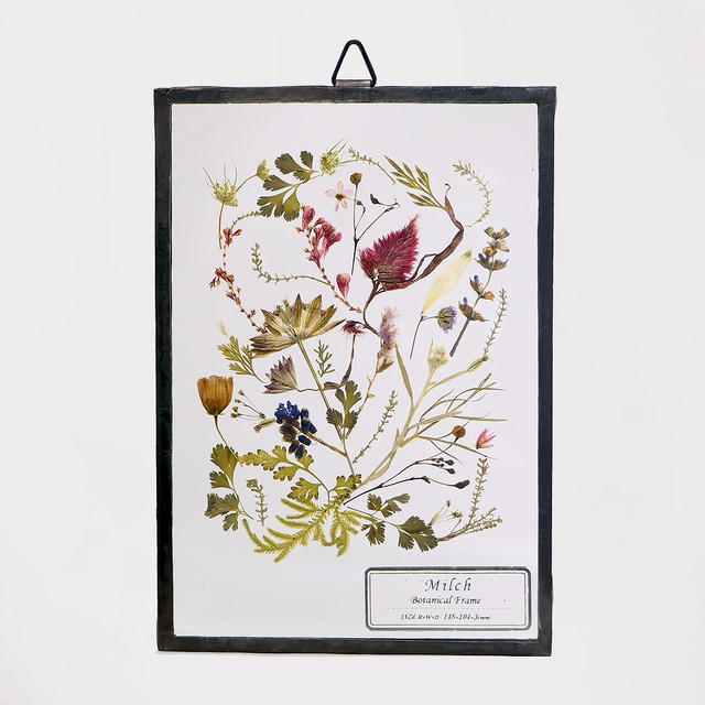 Botanical Frame S034 - Black
