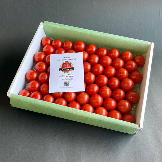 【送料無料】ララ・トマテーゼ フルーツトマト・ギフトBOX 900g