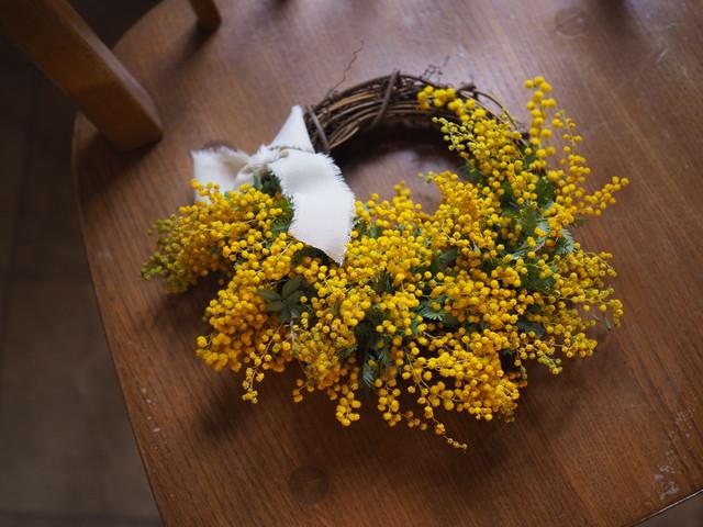 【リース】mimoza C