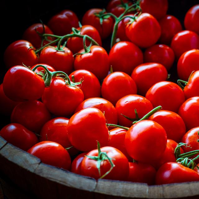 【期間限定】小泉農園厳選・美味トマトーミディ / ご自宅用トマト3Kg