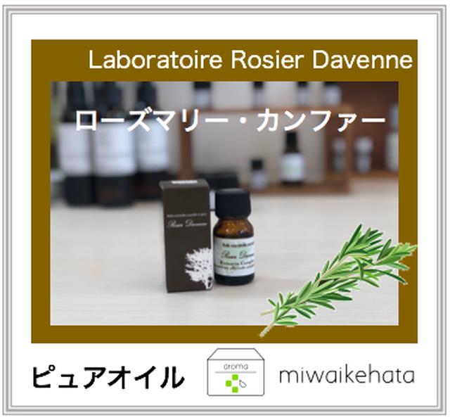 ローズマリー・カンファー  10mL【aboratoire Rosier Davenne】 Rosemary (camphor)