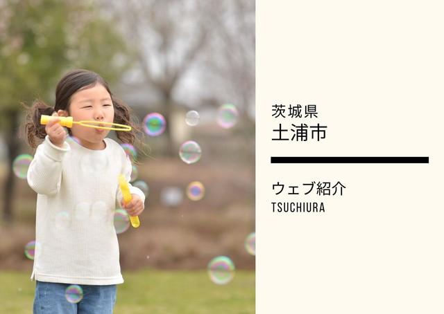 【土浦市】ウェブ紹介プラン