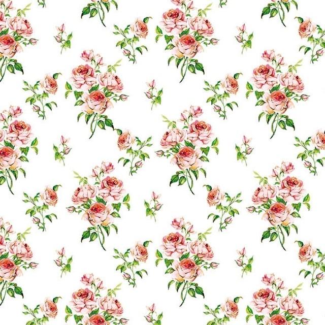 完売再入荷【Ambiente】バラ売り2枚 ランチサイズ ペーパーナプキン CHARLOTTE ピンク×グリーン