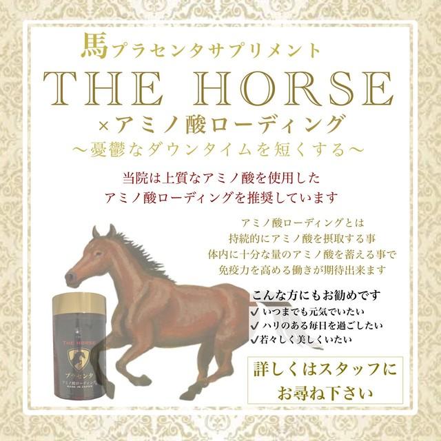 【馬プラセンタサプリ】THE HORSE